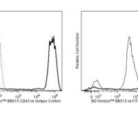 Hu CD43 BB515 1G10 100Tst