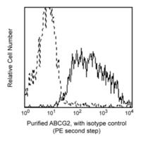 HU ABCG2 BCRP1 PURE MAB 0.1MG 5D3