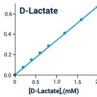 D-Lactate Assay Kit (Fluorometric) (BA0100)